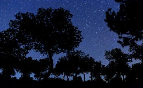 La renovación de las luminarias de Córdoba beneficiará la visibilización del cielo