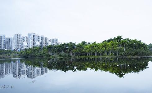 Naciones Unidas impulsa UrbanShift, una iniciativa global para transformar ciudades en espacios verdes