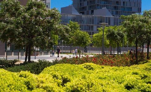 Parque de Diagonal Mar: nuevo refugio de biodiversidad en la ciudad de Barcelona