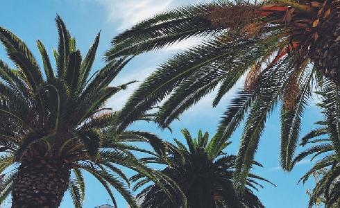 Valencia avanza en el proceso de regeneración de Natzaret y La Punta