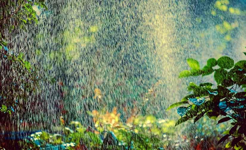 Tres kilómetros lineales de la red de riego de parques y jardines en Jaén