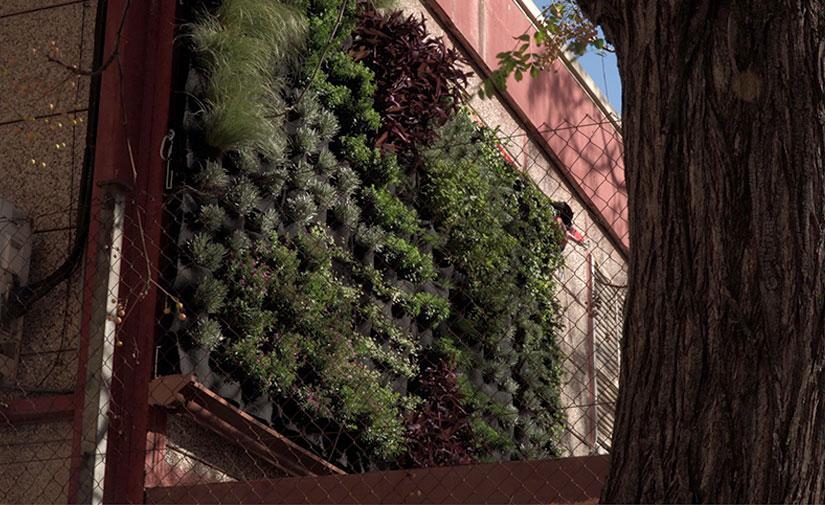 Un nuevo jardín vertical en València para aislar del ruido y reciclar las aguas residuales