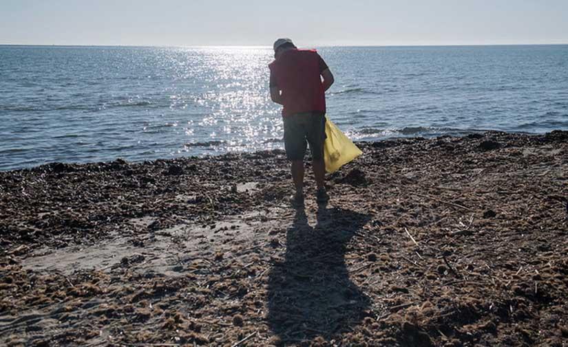 Una nueva edición del Proyecto LIBERA: '1m2 por las playas y los mares'