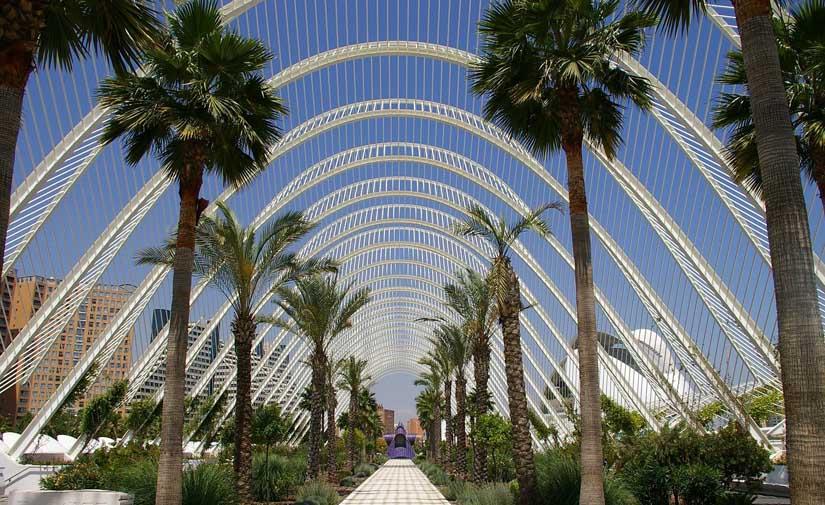 Valencia prepara su candidatura a la Capitalidad Verde Europea 2024