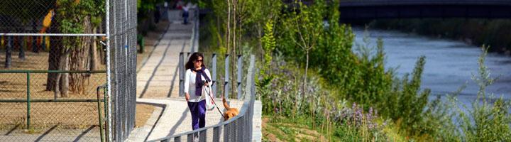 Finalizan las obras de renaturalización en un tramo de 1,3 kilómetros del Manzanares