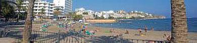 La gestion de las playas de Ibiza